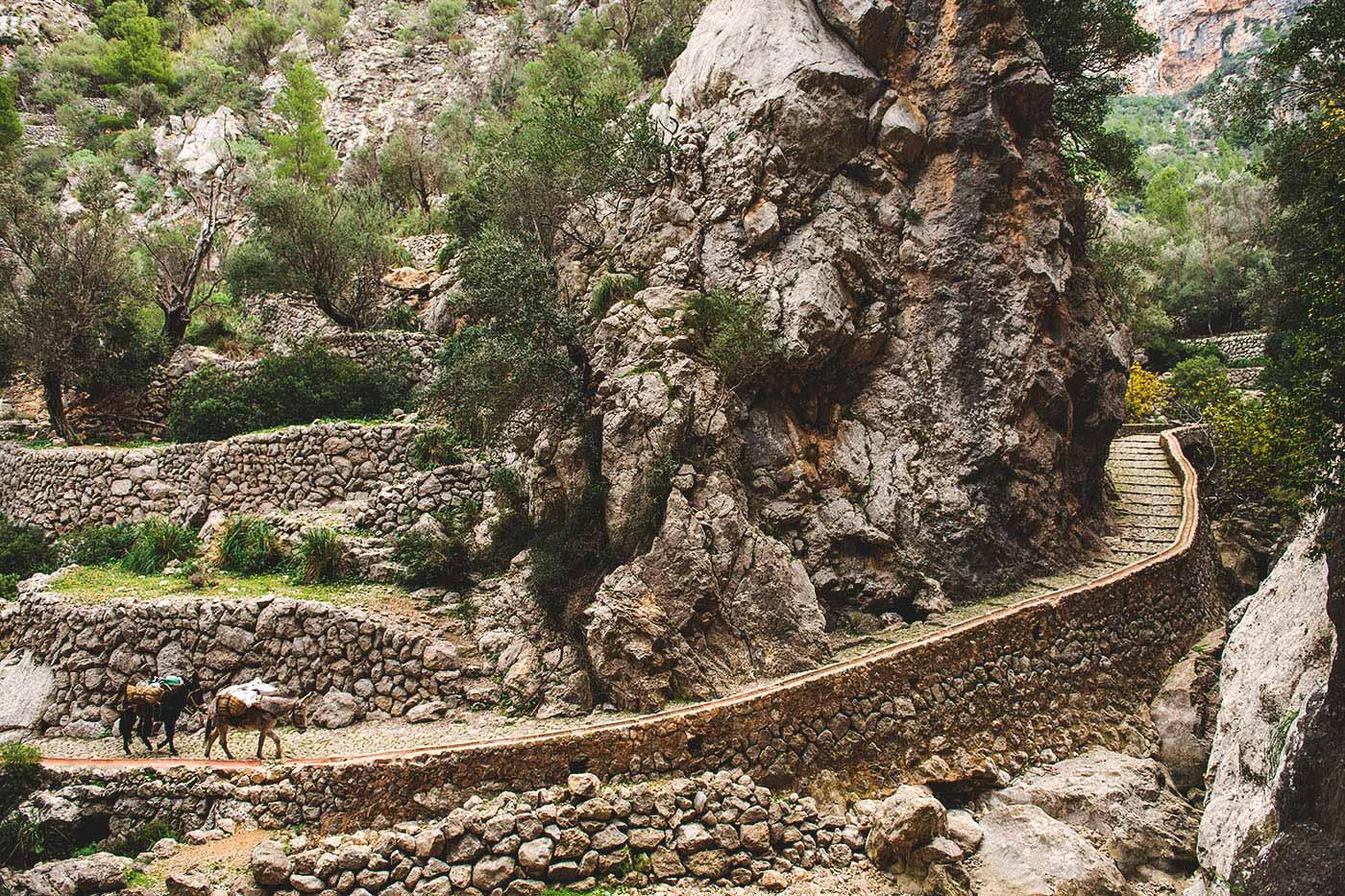 Bild des Biniaraix-Gebirges