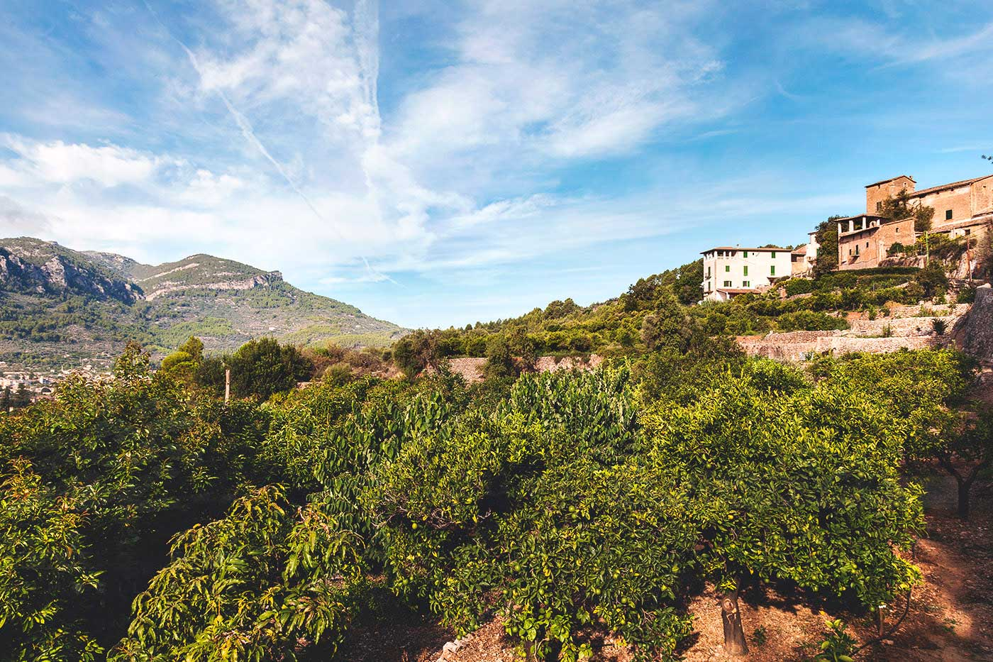 Image of Sóller perfect home from home