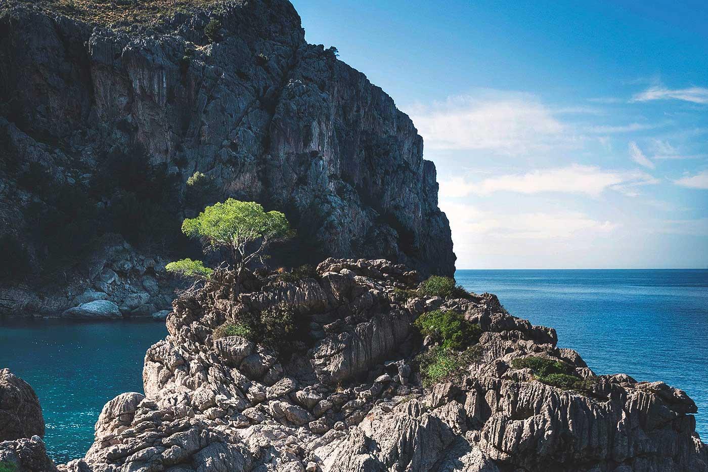 Bild des Meerblicks der Küste von Valldemossa